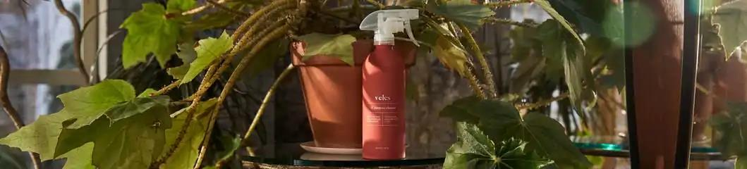 Veles all-purpose cleaner bottle with plant behind in a patio