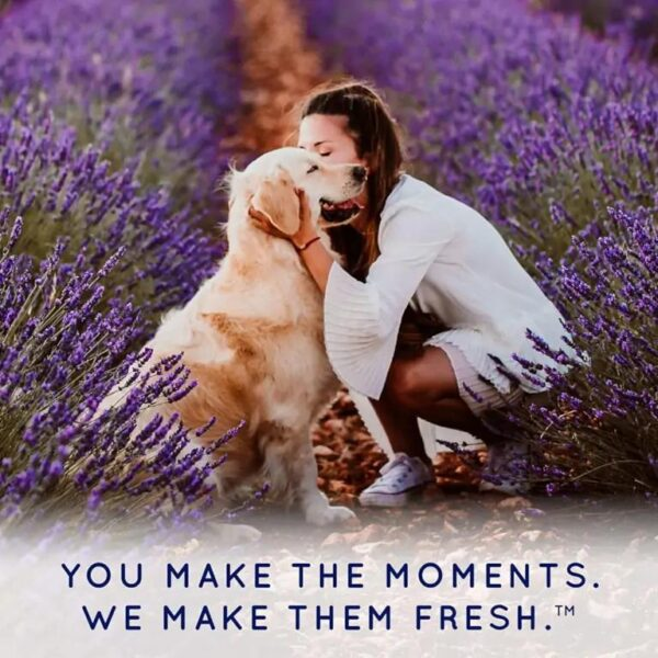 You make the moments we make them fresh