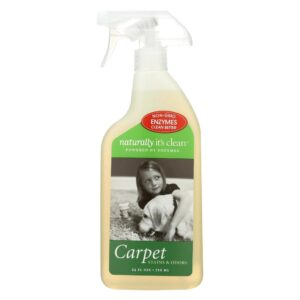 Naturally Its Clean - Carpet Spot Treat Cleaner