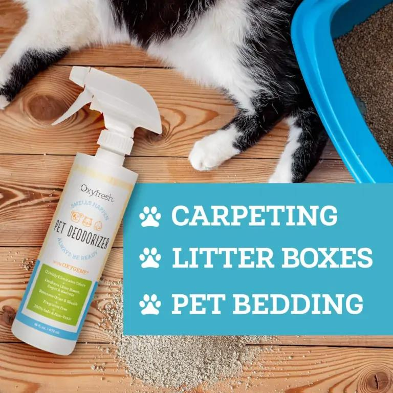 Carpeting- litter boxes- pet bedding
