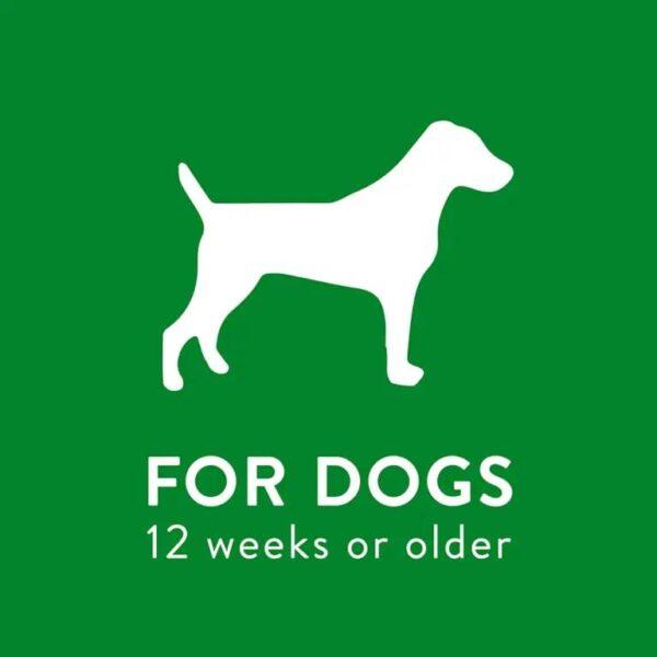 For Dogs 12 weeks or older